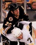 Shawn Thornton Boston Bruins Imagem de Stock