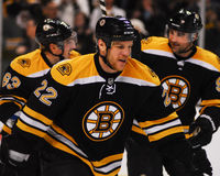 Shawn Thornton, Boston Bruins Foto de Stock Royalty Free