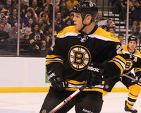 Shawn Thornton, Boston Bruins Stock Images