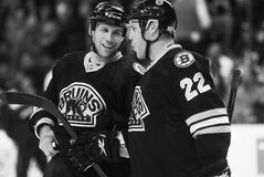 Shawn Thornton Stock Images