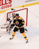 Shawn Thornton, di andata, Boston Bruins Fotografia Stock