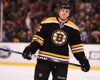 Shawn Thornton, forward, Boston Bruins Stock Images