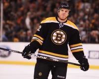 Shawn Thornton, forward, Boston Bruins Stock Images