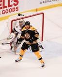 Shawn Thornton, forward, Boston Bruins Stock Photography
