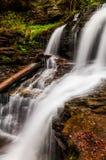 Shawnee Falls, at Ricketts Glen State Park Stock Photography