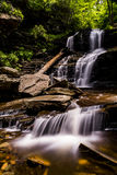 Shawnee Falls - Ricketts Glen State Park - Pennsylvania lizenzfreie stockfotos