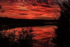 Shawnee National Forest royaltyfria bilder