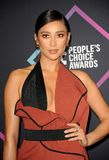 Shay Mitchell royalty free stock images