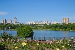 Shcherbakova-Park in Donetsk Stockfoto