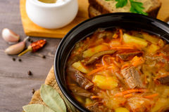 Shchi - traditional russian cabbage soup on wooden table. Stock Image