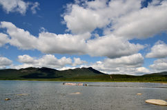 Shchuchye lake State National Natural Park Royalty Free Stock Photo