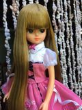 A beautiful LICCA doll royalty free stock image