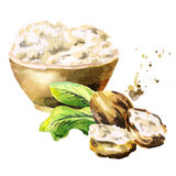 Shea butter in the bowl with nuts. Hand-drawn illustration. Shea butter in the bowl with nuts. Hand-drawn watercolor illustration stock illustration