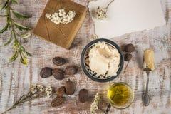 Shea-Butter mit Schibaumprodukt und -nüssen Stockbilder
