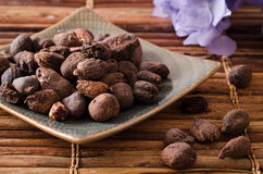 Shea butter nuts Royalty Free Stock Photo