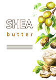 Shea butter with nuts and green leaves background. Watercolor illustration. Shea butter with nuts and green leaves background. Watercolor hand-drawn illustration royalty free illustration