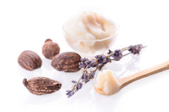 Shea butter and nuts. On white background Stock Photos