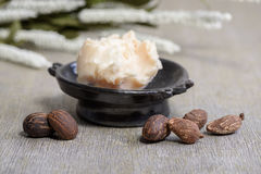 Shea butter nuts on white. And a bowl of shea butter, close up royalty free stock image