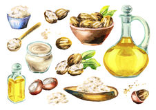 Shea butter, oil and nuts big set. Watercolor illustration. Shea butter, oil and nuts big set. Watercolor hand-drawn illustration stock illustration