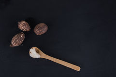 Shea butter and shea nuts Stock Images