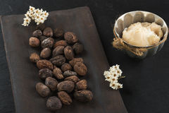 Shea butter and shea nuts. On a chalkboard with copy space Royalty Free Stock Photos