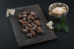 Shea butter and shea nuts. On a chalkboard with copy space stock image