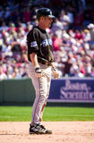 Shea Hillenbrand, Toronto Blue Jays Stock Photography