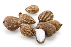 Shea nuts Royalty Free Stock Image
