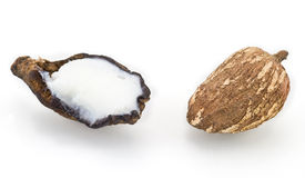 Shea nuts. Isolated on a white bckground Royalty Free Stock Photos