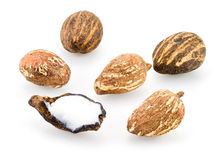 Shea nuts. Isolated on a white bckground Stock Image