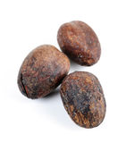 Shea nuts. Raw unprocessed shea nuts isolated on white background Stock Photography