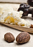 Shea Nuts and Butter. Stil life of two shea nuts with shea butter on the background Stock Photos