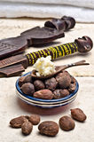Shea nuts and butter in a spoon Stock Image