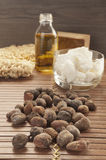 Shea nuts on a natural background Stock Image