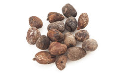 Shea nuts on white background, karite seeds Royalty Free Stock Photography