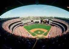 Shea Stadium royalty-vrije stock foto