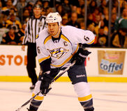 Shea Weber Nashville Predators. Nashville Predators captain Shea Weber #6 Stock Photos