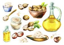 Sheaboomboter, olie en noten grote reeks De illustratie van de waterverf Stock Fotografie