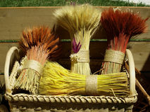Sheaf. The sheafs made on the cereals Stock Image