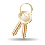 Sheaf of gold keys. On a white background Royalty Free Stock Images