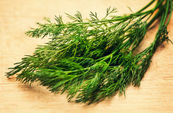 Sheaf of green dill Royalty Free Stock Photography