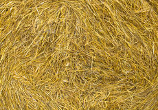 Sheaf of hay background Stock Photo