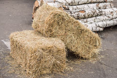 Sheaf of hay. Hay and birch bracket lie on the pavement Royalty Free Stock Photos
