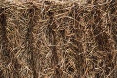 Sheaf of hay. Bracket of hay lying on the street Stock Image