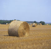 Sheaf of hay on farmland.JH. Sheaf of hay on nrew harvested farmlandJH royalty free stock photos