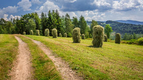 Sheaf of hay near the country road Royalty Free Stock Images