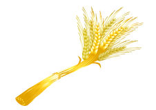 Sheaf of wheat. On a white background (contain the Clipping Path of all objects Stock Photos