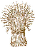 Sheaf of wheat. Vector image of the sheaf of wheat Stock Images