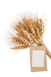 Sheaf of wheat with a blank price tag on a white Royalty Free Stock Photos