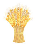 Sheaf of wheat ears. Vector-Illustration Royalty Free Stock Photos